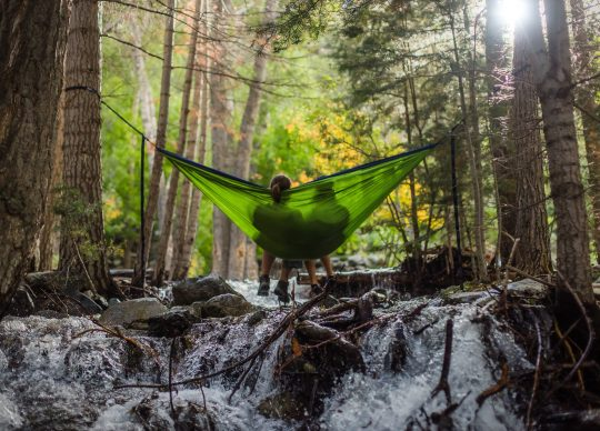 Two people resting in a hammock in the forest